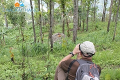 Birdwatching around Chalamthang Home Stay