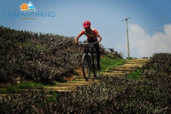 Adventure biking at Temi Tea Garden